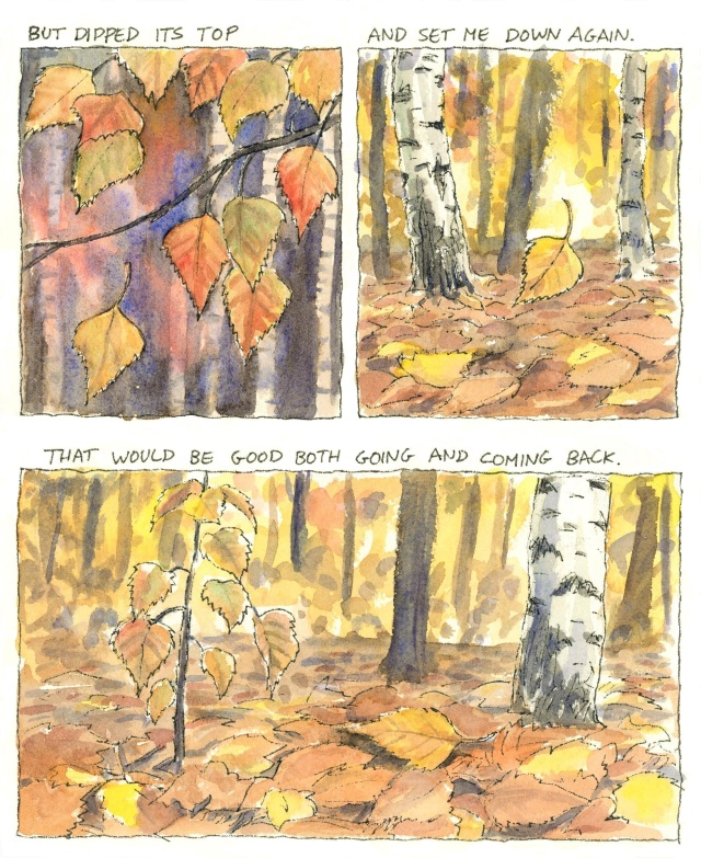 Birches5-2